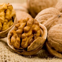 About Walnuts